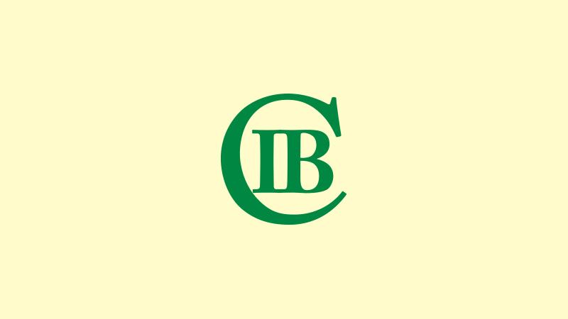 ibcicon